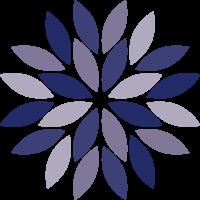 icon-clvh